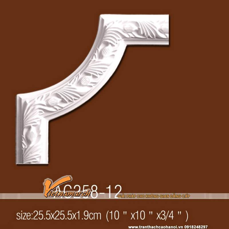 goc-trang-tri-tran-tuong-hoa-van-12