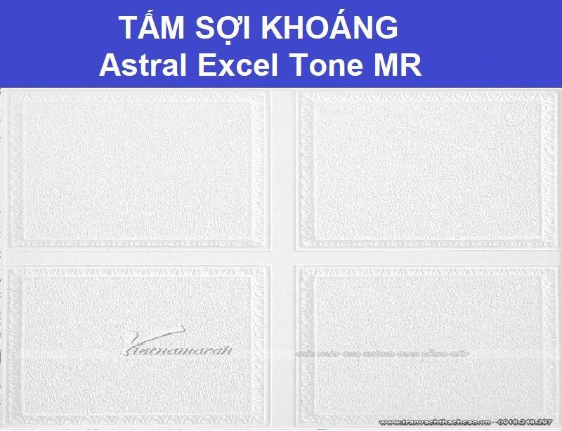 Tấm Sợi Khoáng Astral Excel Tone MR